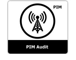 PIM Audit