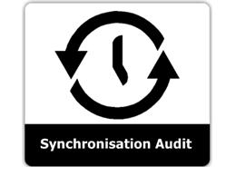 Sync Audit